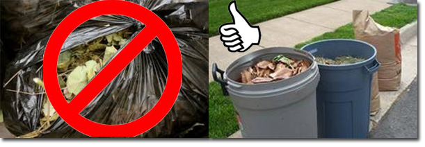 New Yard Waste Laws