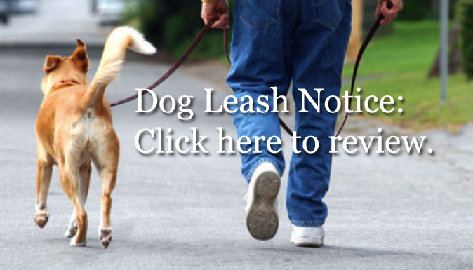 Dog Lease Notice